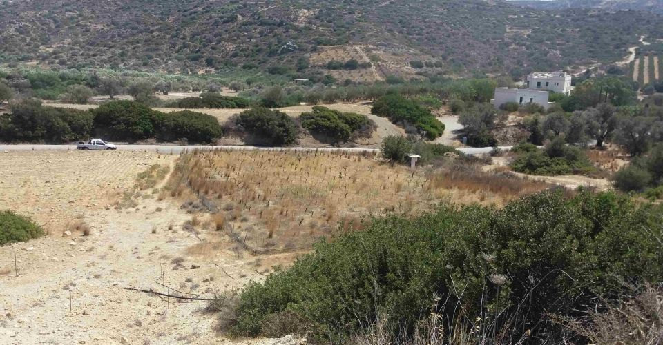 LAND PLOT FOR SALE IN MATALA