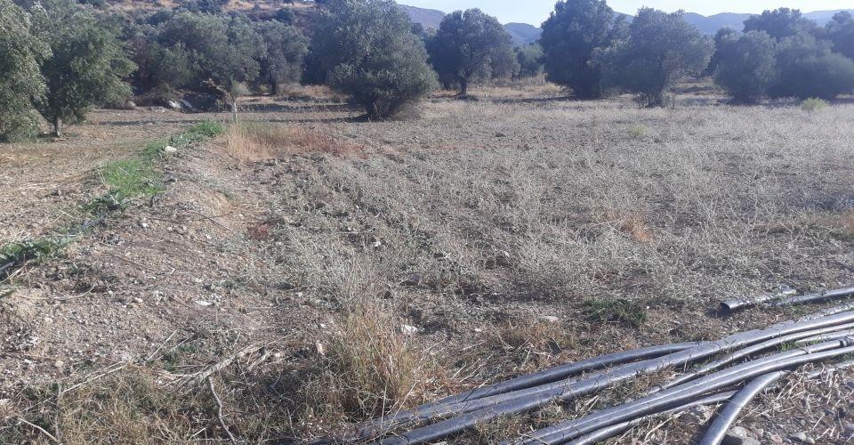 LAND PLOT FOR SALE IN SIVAS