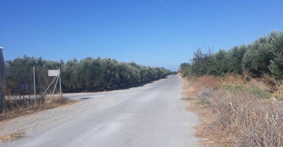 AGRICULTURAL LAND FOR SALE IN VORI