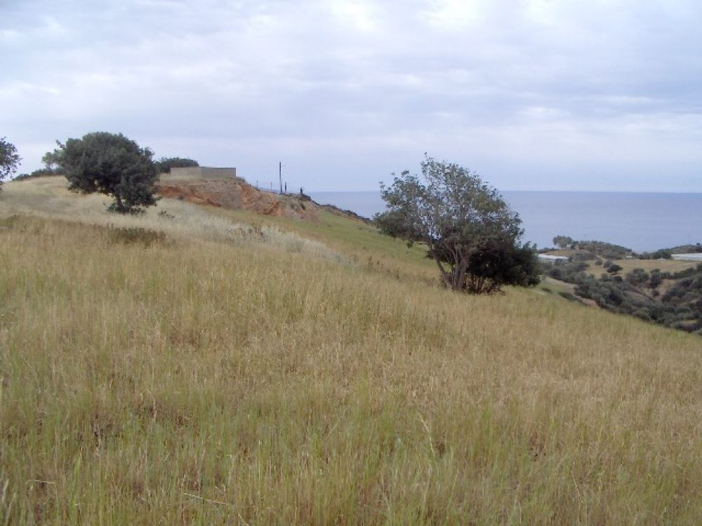A vendre terrain constructible agricole a kokkinos pyrgos agence immobili re for Construction terrain agricole