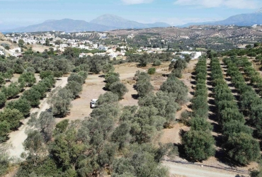 LAND PLOT 2.600 m² FOR SALE IN PITSIDIA
