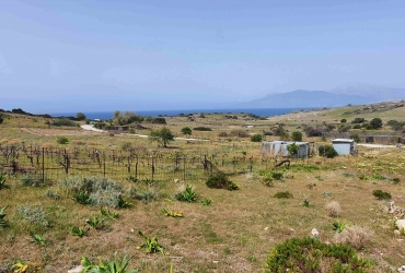 LAND PLOT 650 m² FOR SALE IN PITSIDIA (KOMMOS)