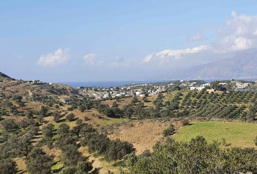 LAND 24.000 m² FOR SALE IN SIVAS