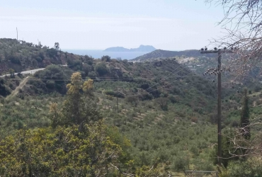 LAND PLOT 34 ACRES WITH AN OLD TRADITIONAL HOUSE FOR SALE IN AGIA GALINI