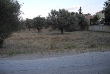 LAND PLOT 4.000 m² FOR SALE IN MIRES