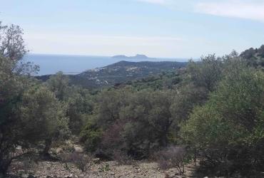 LARGE LAND PLOT FOR SALE NEAR AGIA GALINI