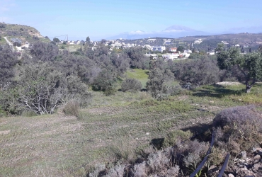 LAND PLOT 2.000 m² FOR SALE IN PITSIDIA