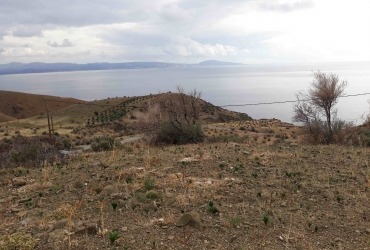 LAND PLOT 4.000 m² FOR SALE IN AI GIORGI (AGIA GALINI)