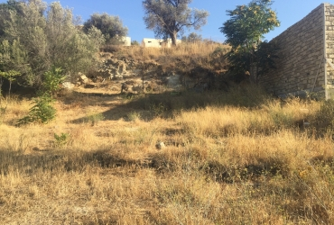 LAND PLOT 650 m² FOR SALE IN PITSIDIA