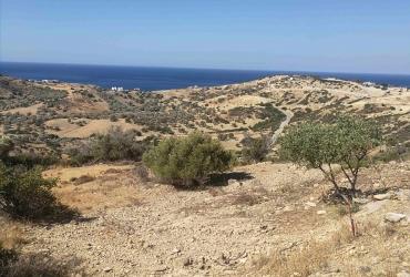 LAND PLOT 4.577 m² FOR SALE IN TRIOPETRA