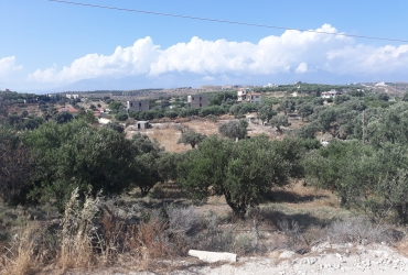 LAND PLOT 4300 m² FOR SALE IN PITSIDIA