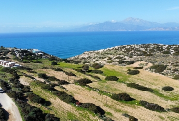 LAND PLOT 4.600 m² FOR SALE IN PITSIDIA