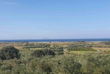 LAND PLOT 8.500 m² FOR SALE IN KALAMAKI