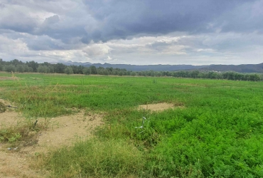 AGRICULTURAL LAND PLOT 6.500 m² FOR SALE IN MIRES