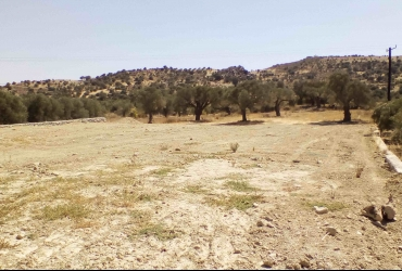 LAND PLOT 3.445 m² FOR SALE IN SIVAS