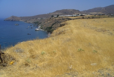 LAND PLOT OF 25 ACRES FOR SALE IN GERO KAMPOS