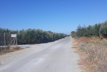 AGRICULTURAL LAND FOR SALE IN VORI