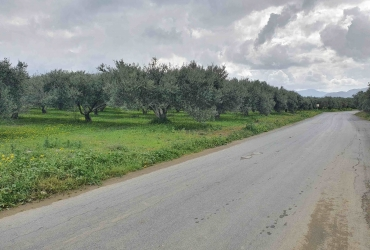 AGRICULTURAL LAND 3.500 m² FOR SALE IN MIRES