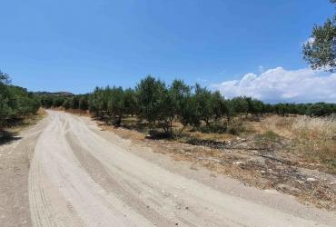 LAND PLOT 2.000 m² FOR SALE IN KAMILARI