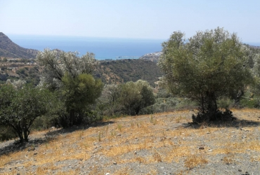 LARGE LAND PLOT FOR SALE NEAR AGIA GALINI