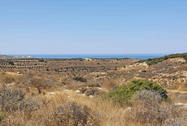 LAND PLOT 4050 m² FOR SALE IN KAMILARI