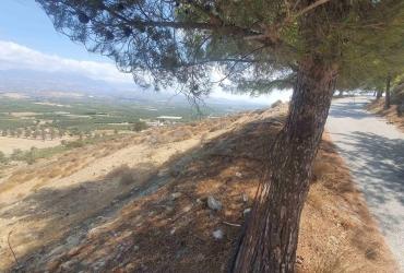 LAND PLOT 2.450 m² FOR SALE IN SIVAS