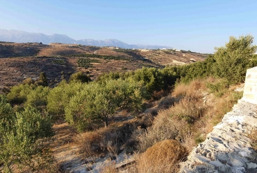 LAND PLOT 2.248 m² FOR SALE IN PITSIDIA