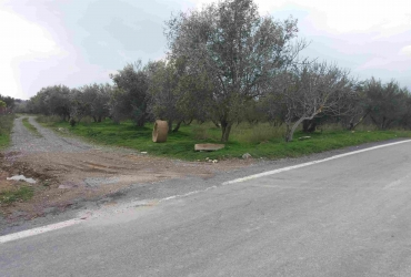 AGRICULTURAL LAND 5700 m² FOR SALE IN TIMBAKI