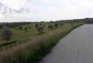 AGRICULTURAL LAND FOR SALE IN MIRES