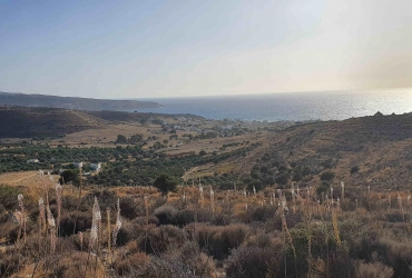 LAND PLOT 4100 m² FOR SALE IN KALAMAKI