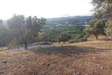 AGRICULTURAL LAND FOR SALE IN FANEROMENI