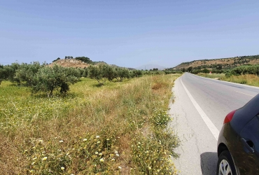 AGRICULTURAL LAND 12.000 m² FOR SALE IN MIRES