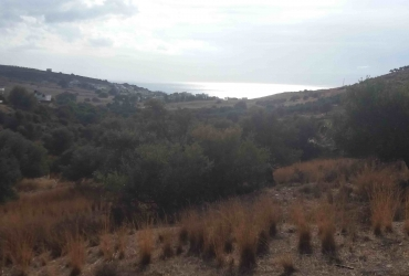 LAND PLOT 2.000 m² FOR SALE IN KALAMAKI