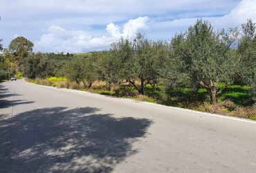 LAND PLOT OF 2 ACRES FOR SALE IN SIVAS